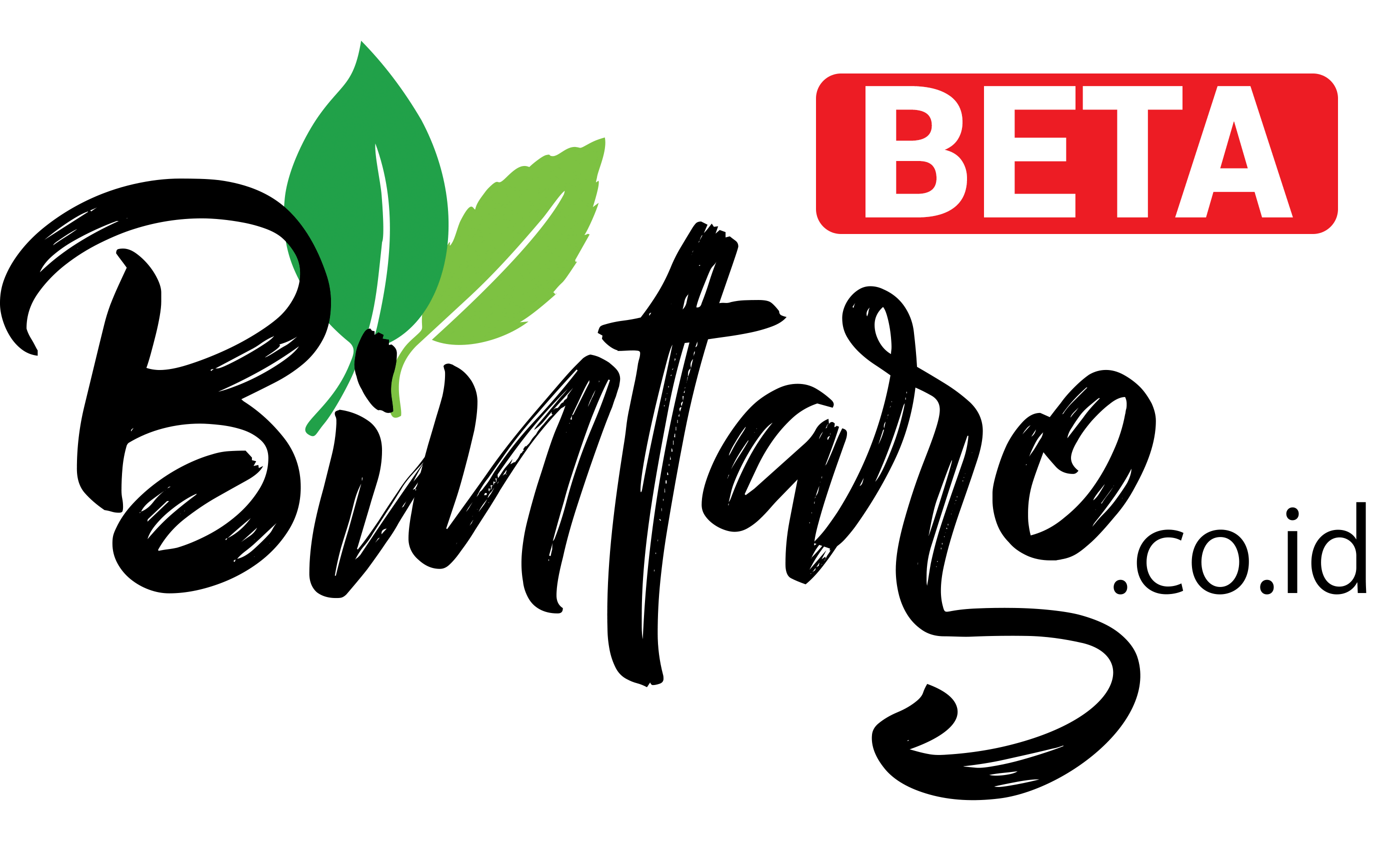 Bintaro.co.id